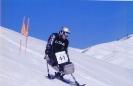 apline skiing_14