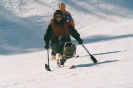 apline skiing_16
