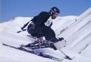 apline skiing_19