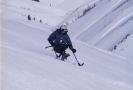 apline skiing_22