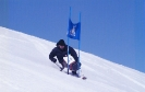 apline skiing_24