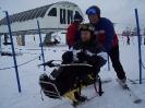 apline skiing_8